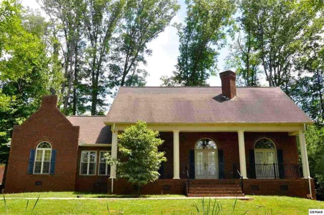 3163 Nina Rd, White Pine, TN 37890 (#202328) :: Colonial Real Estate