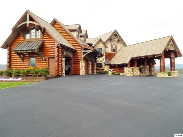 2640 Hickory Patch Way, Sevierville, TN 37862 (#202445) :: Colonial Real Estate