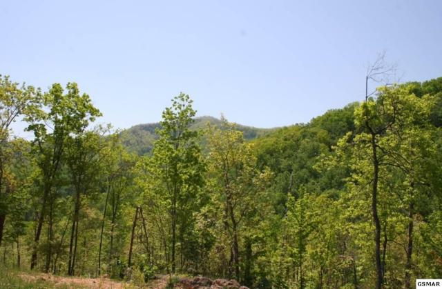 1633 Mountain Dreams Way, Sevierville, TN 37862 (#202464) :: Billy Houston Group