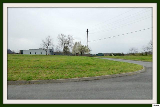 Lot 72 Business Center Cr., Sevierville, TN 37876 (#202522) :: Colonial Real Estate
