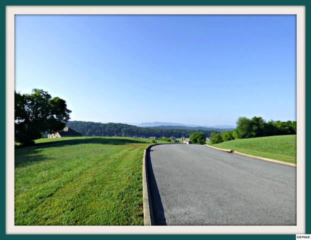 9407 Shirley Ann Rd. Lot 204 River I, Kodak, TN 37764 (#202708) :: Billy Houston Group