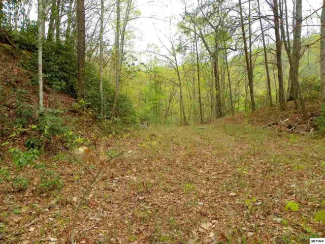 Lot 44 Jefferson Road Norton Creek Cl, Gatlinburg, TN 37738 (#202917) :: Billy Houston Group