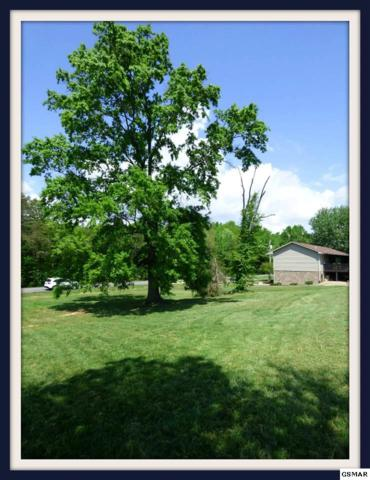 Lot 2108 Back Nine Dr., Baneberry, TN 37809 (#203082) :: Colonial Real Estate