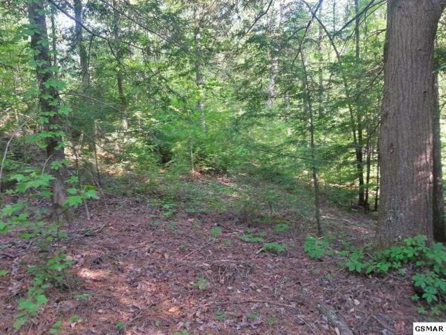 Lot 24 Double Oaks Way Also Frontage O, Sevierville, TN 37862 (#203122) :: Billy Houston Group