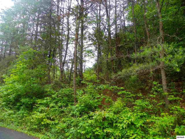 Lot 5 Licking Spring Way, Sevierville, TN 37876 (#203359) :: Billy Houston Group
