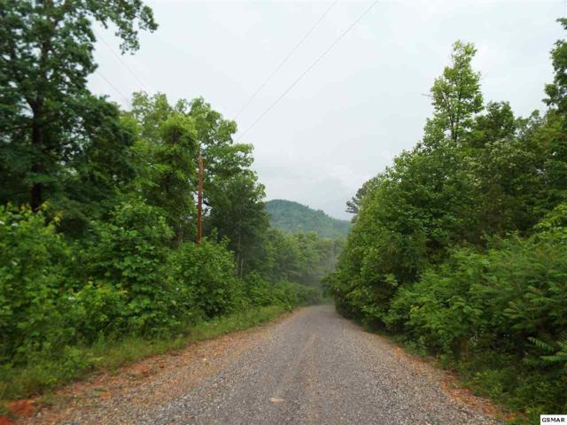 Parcel 052.08 Eagle Mountain Rd, Newport, TN 37821 (#203407) :: Tennessee Elite Realty
