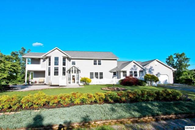 1491 Shenandoah Rd, Parrottsville, TN 37843 (#203479) :: Colonial Real Estate
