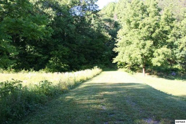 lot 1 Coy Rhea Way, Sevierville, TN 37876 (#203736) :: Billy Houston Group