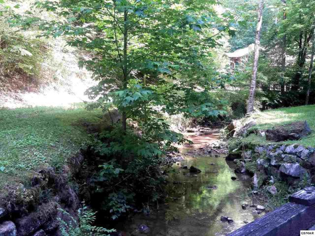 Lot 18 Cabin Creek Way, Sevierville, TN 37862 (#203839) :: Billy Houston Group