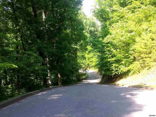 Lot 3 Saddle Creek Way, Sevierville, TN 37862 (#203843) :: Billy Houston Group