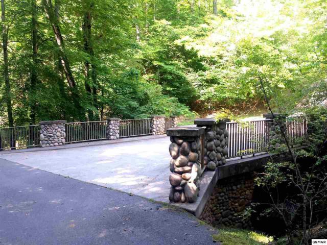 Lot 19 Cabin Creek Way, Sevierville, TN 37862 (#203854) :: Billy Houston Group