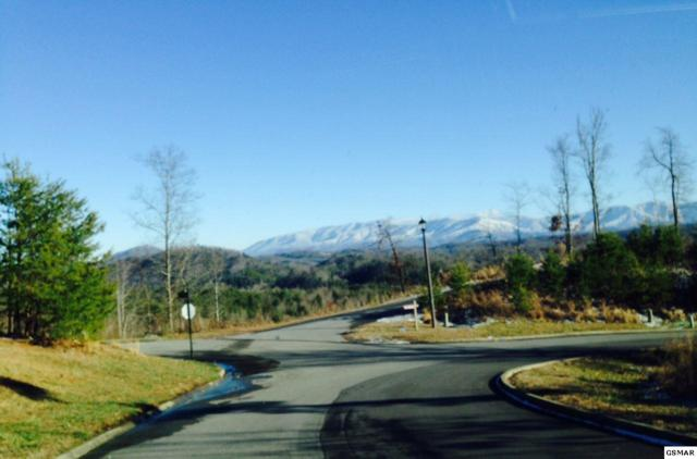 Lot 18 Blackthorn Trail, Sevierville, TN 37876 (#204035) :: Billy Houston Group
