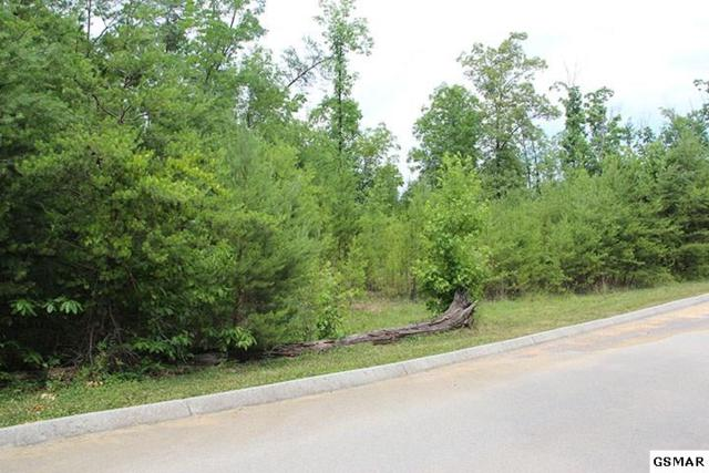 Lot 67 Smoky Cove Rd, Sevierville, TN 37876 (#204212) :: Billy Houston Group