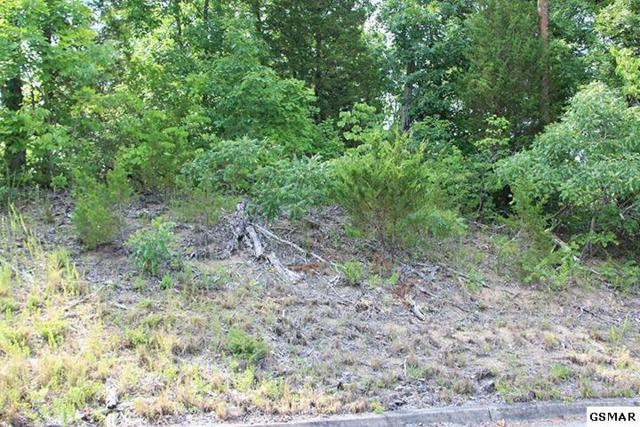 Lot 2 Harbor Point, Sevierville, TN 37876 (#204217) :: Colonial Real Estate