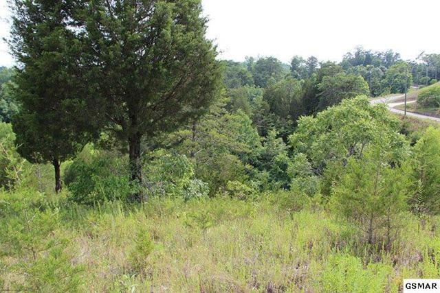 Lot 12 Harbor Point, Sevierville, TN 37876 (#204218) :: Colonial Real Estate