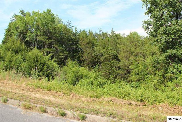 Lot 18 Harbor Point, Sevierville, TN 37876 (#204222) :: Colonial Real Estate
