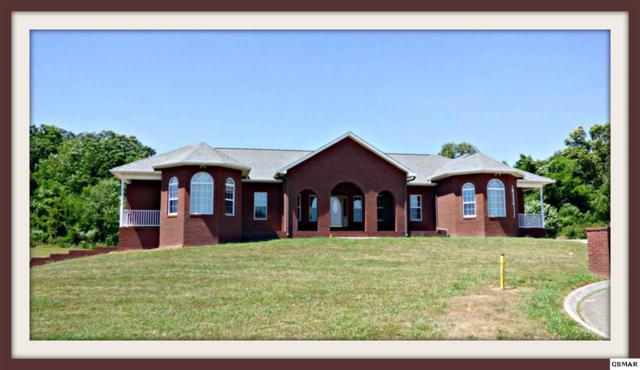 196 Golf View Blvd, Dandridge, TN 37725 (#204231) :: Four Seasons Realty, Inc