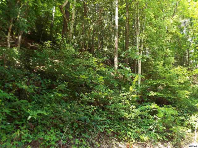 Lot 3 Headrick Lead, Sevierville, TN 37862 (#204257) :: Billy Houston Group