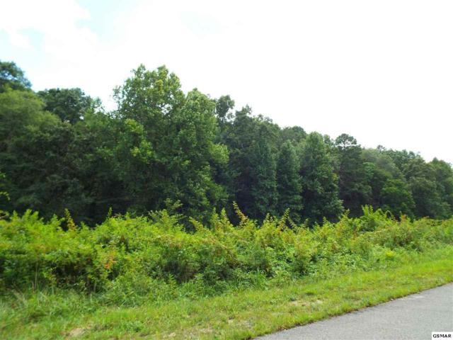Lot 39 English Fields Drive, Newport, TN 37821 (#204969) :: Billy Houston Group