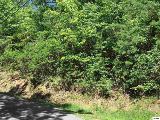 Lot 1057 Beach Front Dr., Sevierville, TN 37876 (#205001) :: The Terrell Team