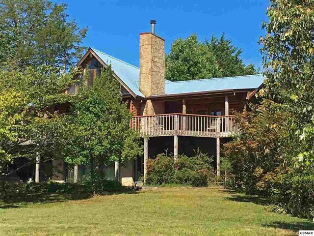 1399 Lake Front Drive, Dandridge, TN 37725 (#205248) :: Colonial Real Estate