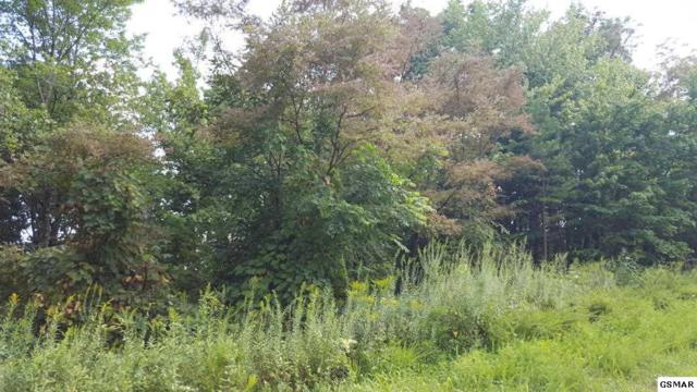 Lot 13 Campbell Highlands, Pioneer, TN 37847 (#205385) :: Billy Houston Group
