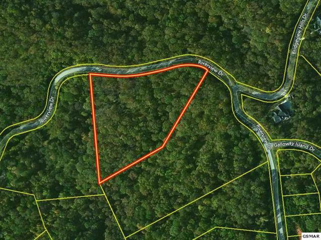 Lot 24C River View Drive, Dandridge, TN 37725 (#205449) :: Four Seasons Realty, Inc