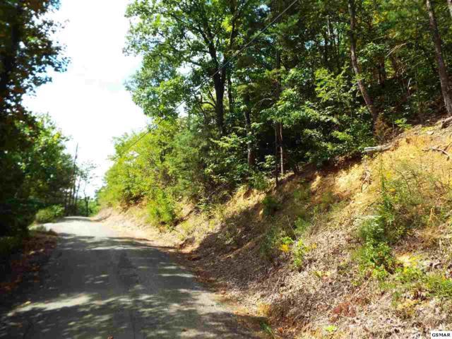 Lot 4 Headrick Lead, Sevierville, TN 37876 (#205488) :: Colonial Real Estate