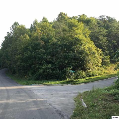 Lot 1 Pheasant Court Lot 1 Harbor Oa, Sevierville, TN 37725 (#205694) :: The Terrell Team