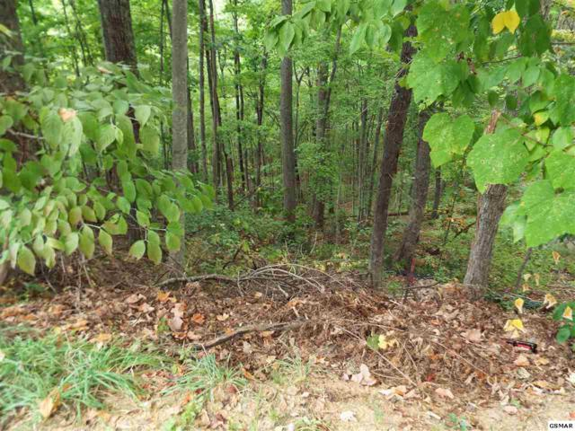 Lot 74 Pine Top Lane Deer Path, Gatlinburg, TN 37738 (#205722) :: Billy Houston Group