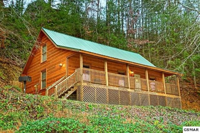 619 Pine Mountain At Trails End, Pigeon Forge, TN 37863 (#205762) :: Colonial Real Estate