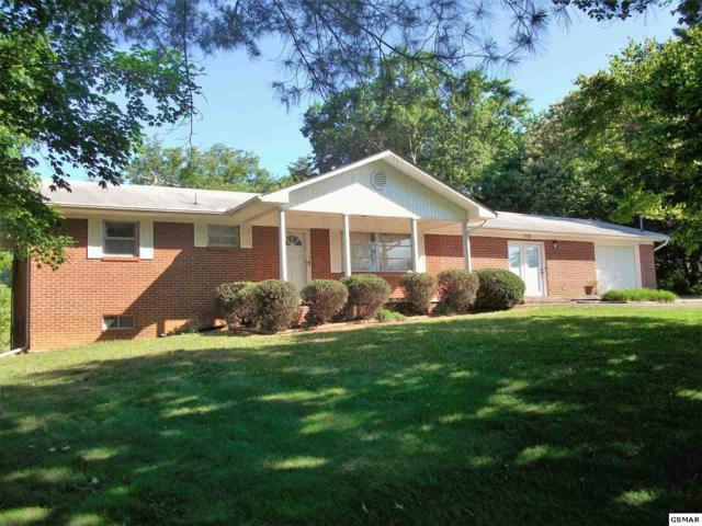 1134 Newman Riley Dr, Dandridge, TN 37725 (#205931) :: Colonial Real Estate