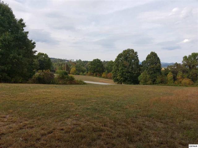 Lot 186 Pheasant View, Rutledge, TN 37861 (#206044) :: Four Seasons Realty, Inc