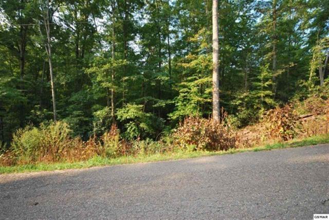 Lot 27 Pinnacle Vista Road Pinnacle View, Gatlinburg, TN 37738 (#206353) :: Colonial Real Estate