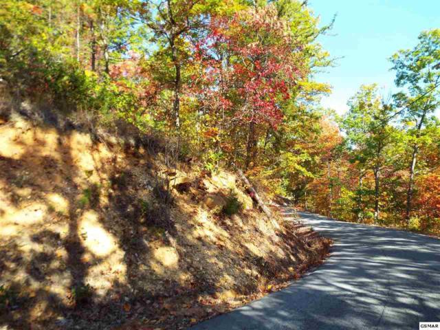 Lot 8 Overholt Trail, Sevierville, TN 37862 (#206426) :: Billy Houston Group