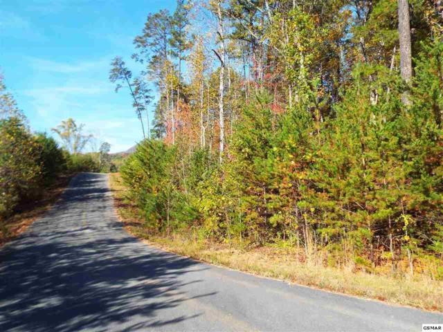 Lot 12 Mcgaha Chapel Road White Dogwood D, Cosby, TN 37722 (#206454) :: Billy Houston Group