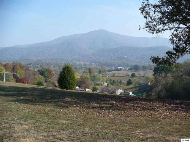 Lot #20-R1 Roundtop Drive, Sevierville, TN 37862 (#206461) :: Billy Houston Group