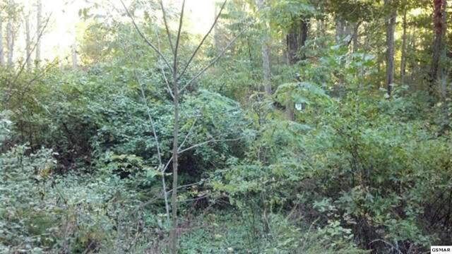 Lot 121 Summit Trails Dr, Sevierville, TN 37862 (#206469) :: Colonial Real Estate