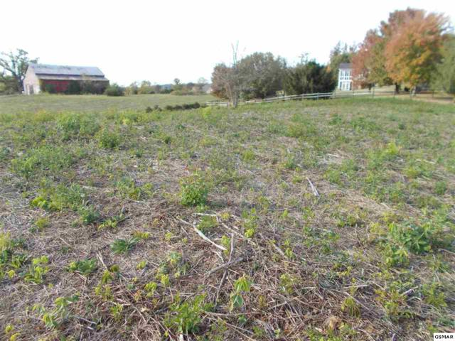 LOT 50 Ernest Mcmahan Road, Sevierville, TN 37862 (#206620) :: Colonial Real Estate