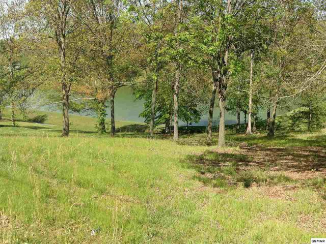 Lot 25 Willmore Drive, White Pine, TN 37890 (#206677) :: Billy Houston Group
