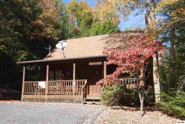"""2144 Cub Circle """"CUDDLY BEAR"""", Sevierville, TN 37862 (#206708) :: Colonial Real Estate"""