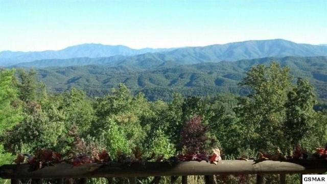 Lot 30 Summit Trails Drive, Sevierville, TN 37862 (#206717) :: Colonial Real Estate