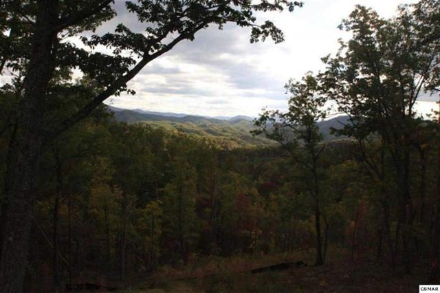 Lot 17 Summit Trails Drive, Sevierville, TN 37862 (#206719) :: Colonial Real Estate