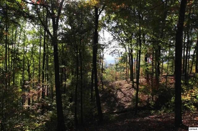 Lot 133 Summit Trails Dr, Sevierville, TN 37862 (#206724) :: Colonial Real Estate