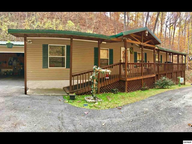 2403 Goldrush Road, Pigeon Forge, TN 37863 (#206780) :: Four Seasons Realty, Inc