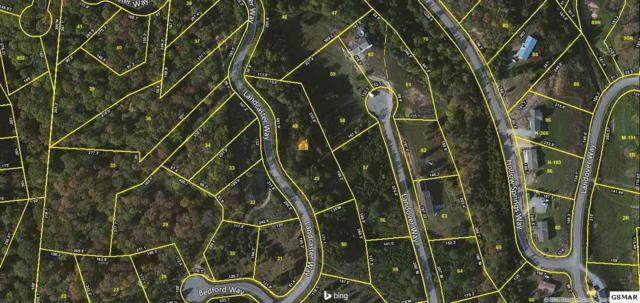 Lot 48,49,58,59 Landover Way, White Pine, TN 37890 (#206881) :: Billy Houston Group