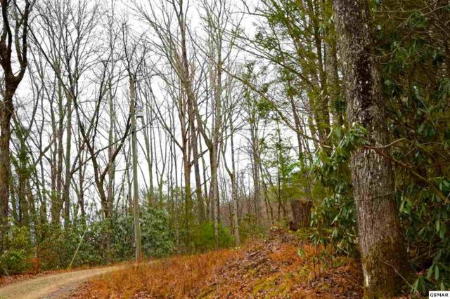Old Cades Cove Road, Lot 1, Townsend, TN 37882 (#207179) :: Billy Houston Group