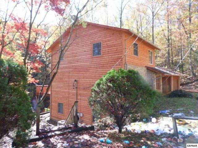 1119 Raintree Rd Black Bear Retr, Gatlinburg, TN 37738 (#207486) :: Billy Houston Group