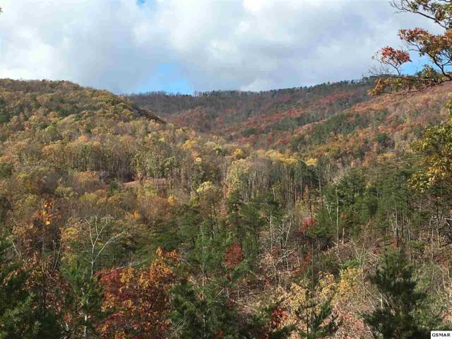 Lot 67 Smoky Bluff Trail, Sevierville, TN 37862 (#207652) :: Colonial Real Estate