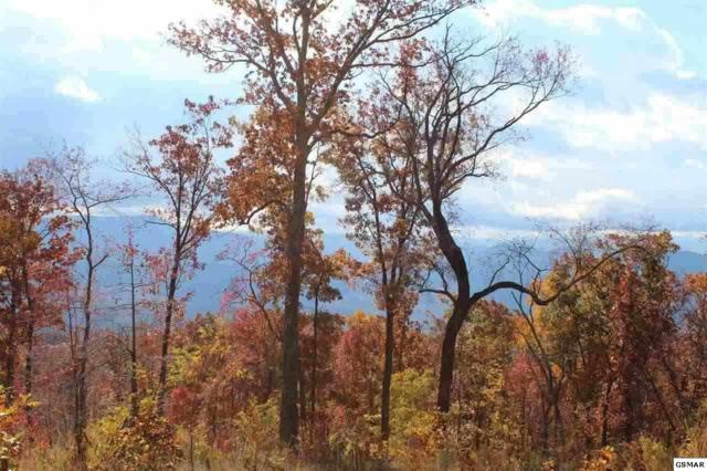 146-R Mountaineer Trail, Sevierville, TN 37862 (#207653) :: Billy Houston Group